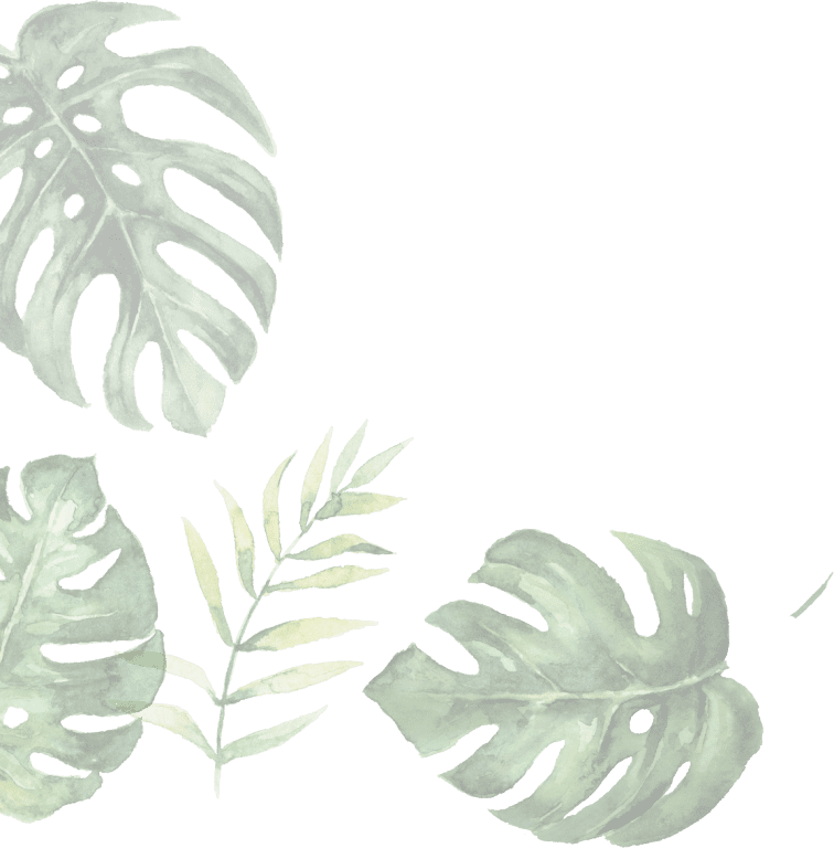 illustration of leaves